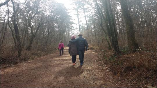 사려니 숲길을 걷고 있는 사람들.ⓒ조남대