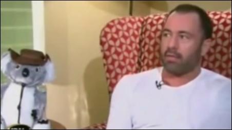 UFC 조 로건 해설위원. 유튜브 영상 화면 캡처.